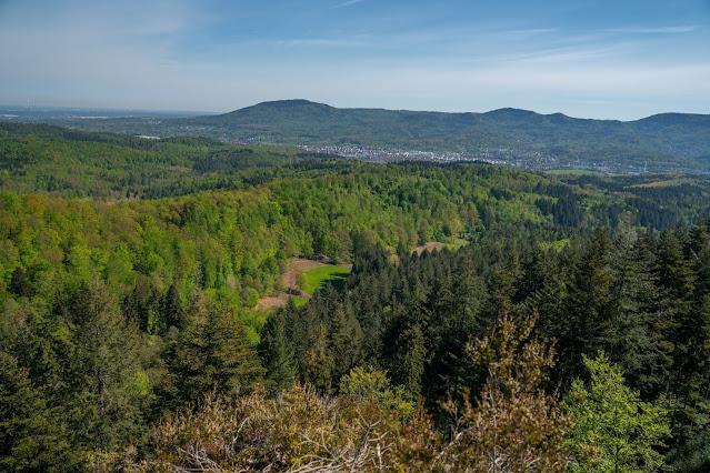 Premiumwanderweg Murgleiter | Etappe 1 von Gaggenau nach Gernsbach | Wandern nördlicher Schwarzwald 14