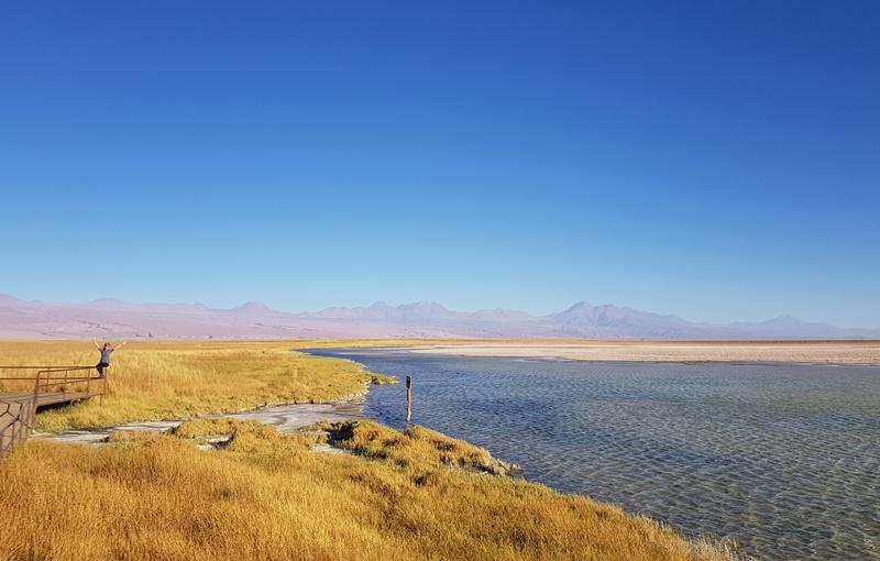 Laguna Cejar e Tebenquiche, tudo sobre o passeio!