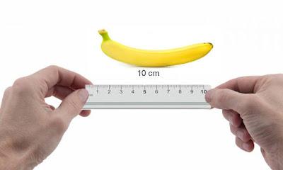 penis ukuran kecil