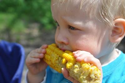 Kenapa anak 1 tahun tidak mau makan nasi? Apakah itu normal!