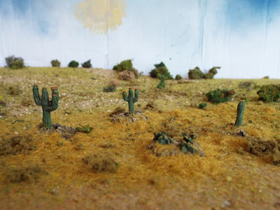 MAW99 Cacti picture 3