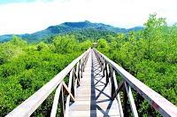Tempat Wisata Trenggalek di Tutup Akibat Corona