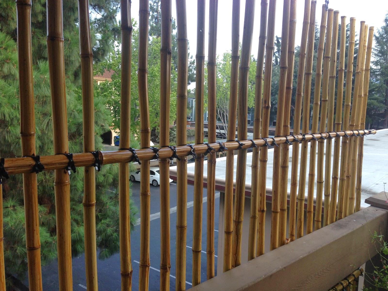 Balcony Container Garden: Bamboo Privacy Screen/Trellis