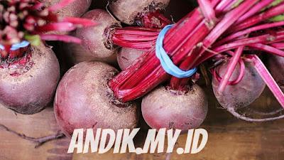 buah bit, manfaat buah bit, khasiat buah bit, gizi buah bit, beetroot