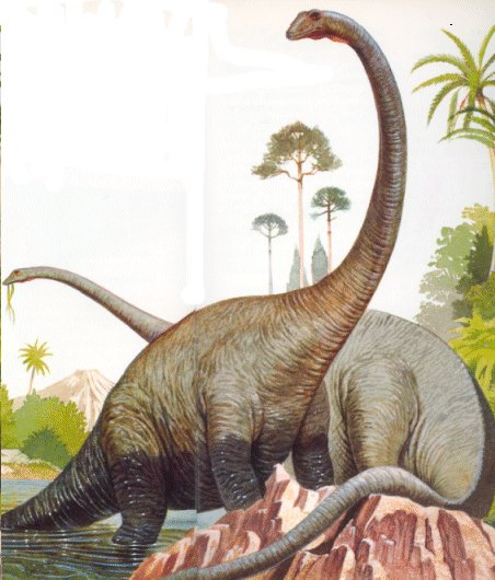 Black And Head Raptor Red Dinosaur