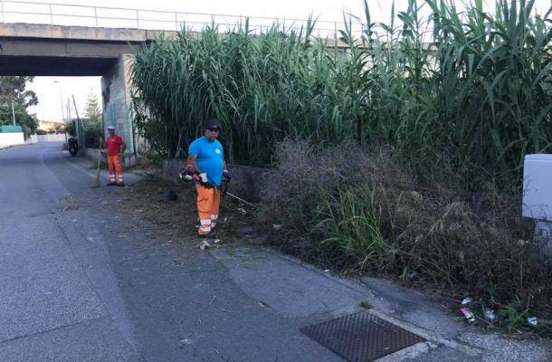 Ufficio Verde Pubblico : Milazzo in comune affidamento manutenzione verde pubblico e