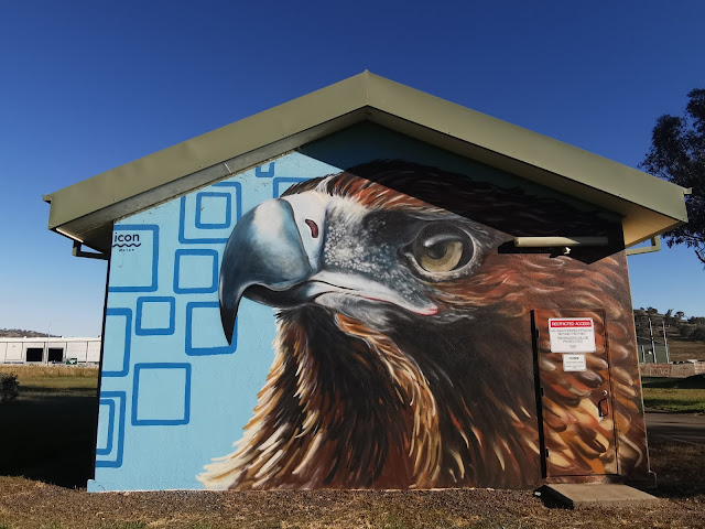Hume Street Art   Icon Water project by GraffikPaint
