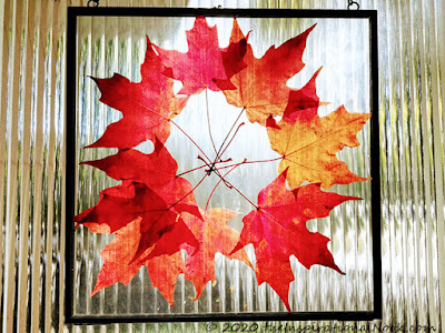 Framing dried leaves