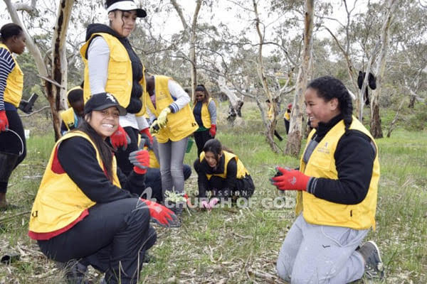 Tree Planting Campaign, Westmeadows Melbourne, VIC