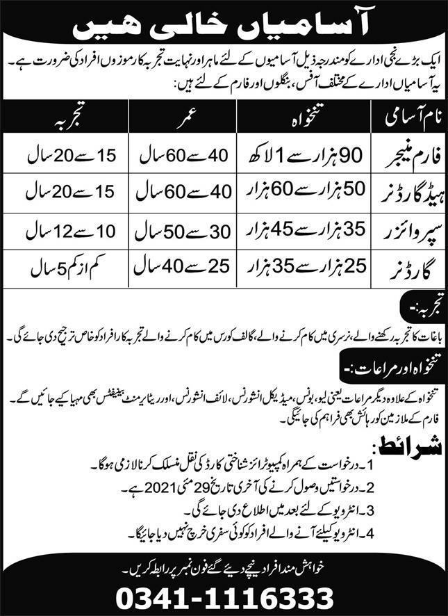 Large Private Institute Jobs 2021 in Pakistan