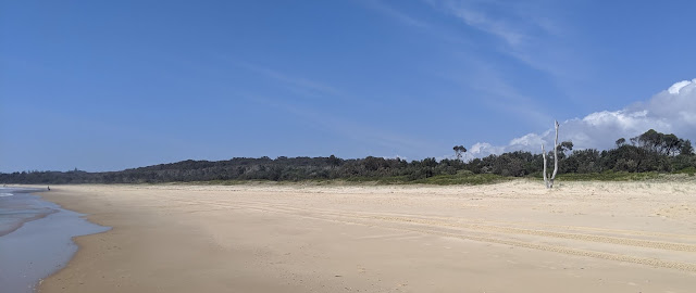 A photo along a beach which gradually curves away; to the left is the water, to the right is bushland. The sky is a stunning blue ombre to white along the horizon.