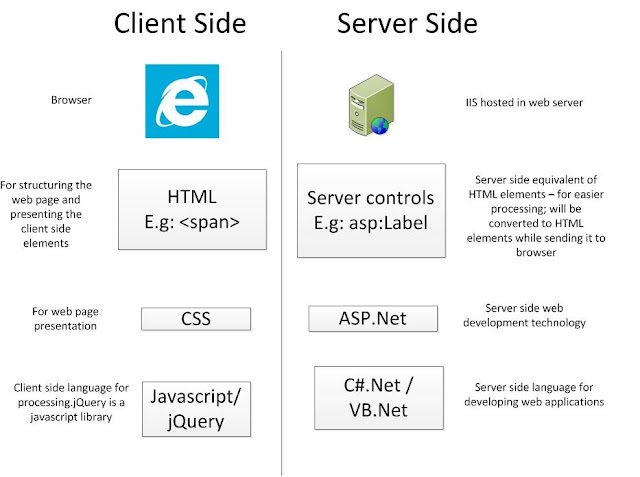 server side and client side controls in asp.net