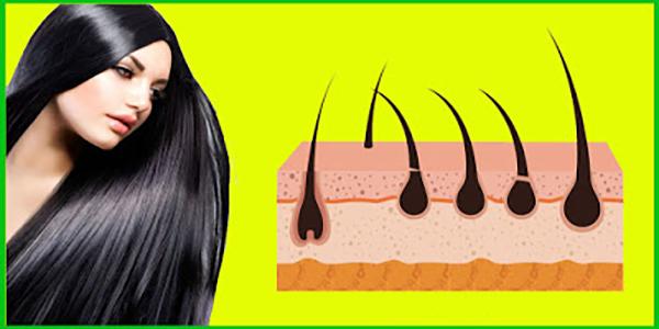 أفظل 10  مكملات غذائيه طبيعيه لعلاج تساقط الشعر