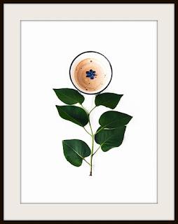 plakat z kawą, plakat kawowy, plakat do kuchni, plakat minimalistyczny, plakat A3, plakat pionowy, plakat z bzem, plakat z kwiatem bzu
