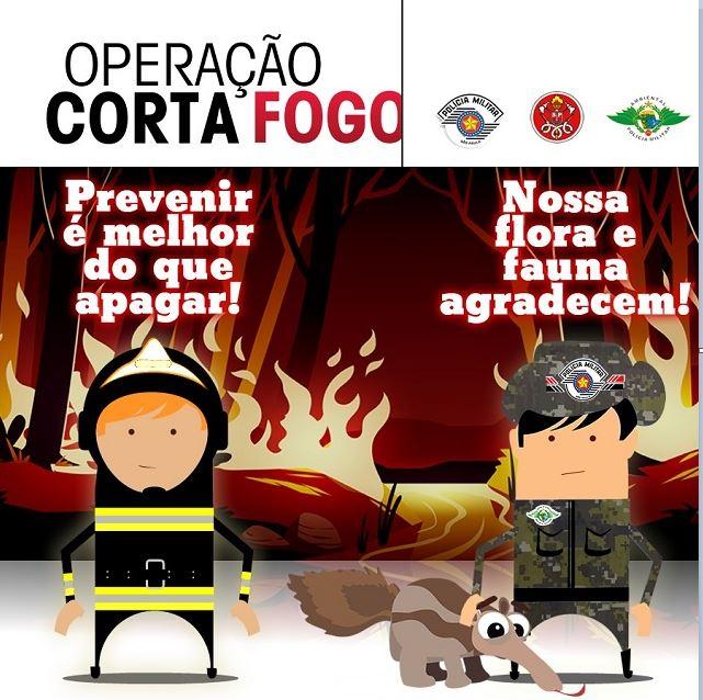 Operação Corta Fogo - Polícia Militar Ambiental