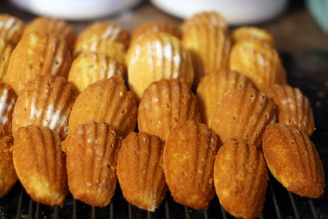 Madeleines resting with the shell side up on a cooling rack.