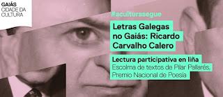 https://www.cidadedacultura.gal/gl/evento/letras-galegas-2020-ricardo-carvalho-calero-lectura-compartida-en-lina