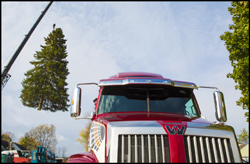 Western Star 5700XE Delivering the 2017 Michigan State Capitol Christmas Tree
