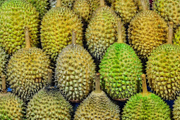 Uncover the Big Durian