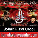 http://www.humaliwalayazadar.com/2015/06/johar-rizvi-urooj-nohay-2016.html