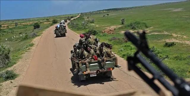 Somali army captures senior leader of al-Shabab
