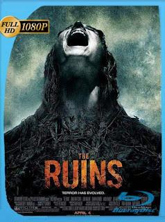 Las ruinas (The Ruins) (2008) HD [1080p] Latino [GoogleDrive] SilvestreHD