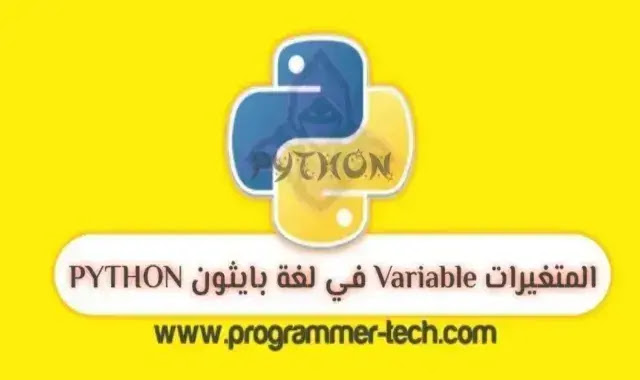 variable python language