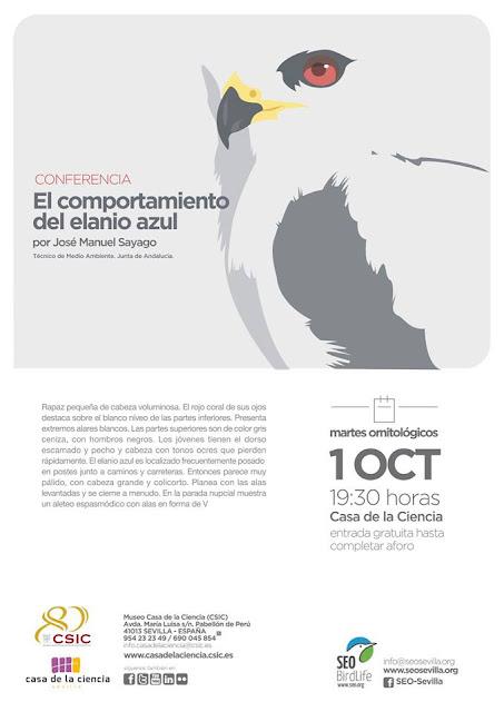 Conferencia: El comportamiento del Elanio azul. Por José Manuel Sayago, 10 de Octubre 2019. Grupo Local SEO-Sevilla.