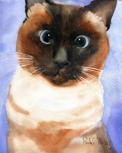 Rachel's Studio Blog: Cross Eyed Siamese Cat Art