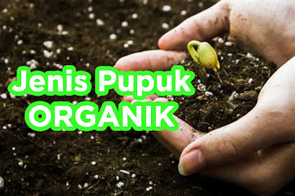 5 Jenis Pupuk Organik Padat Dan Cair Untuk Tanaman