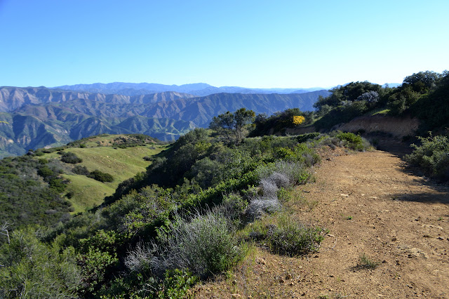 Arroyo Burro Road