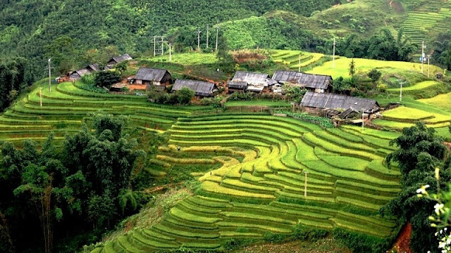 Villages in Sapa: The Great Destination For Homestay & Trekking ToursVillages in Sapa: The Great Destination For Homestay & Trekking Tours 4