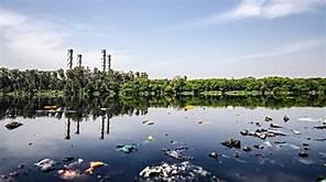 لمحة عن التلوث البيئي