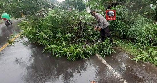 Waspada Cuaca Buruk, Personil polsek Marbo Evakuasi Ranting Pohon Di Tengah Jalan