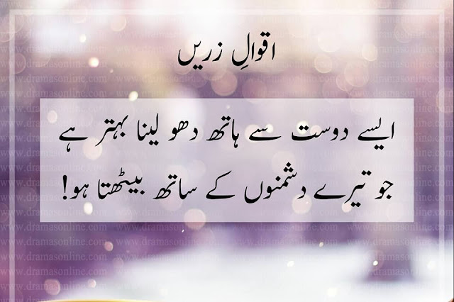 10 Urdu Quotes About Friends and Enemies