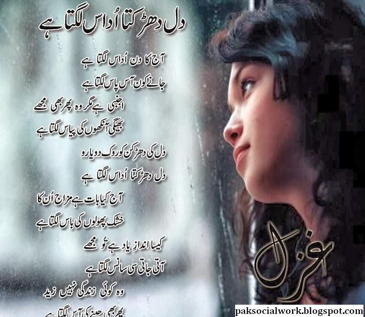 Koi Puche Mere Dil Se Mp3 Song: Urdu Shayari: Urdu Love Poem With Attract Design