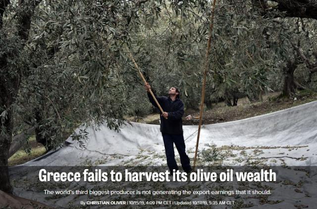 Politico: Η Ελλάδα έχει αποτύχει να αξιοποιήσει το ελαιόλαδο