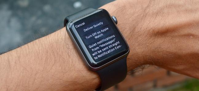 شاشة إدارة إشعارات التطبيق على Apple Watch