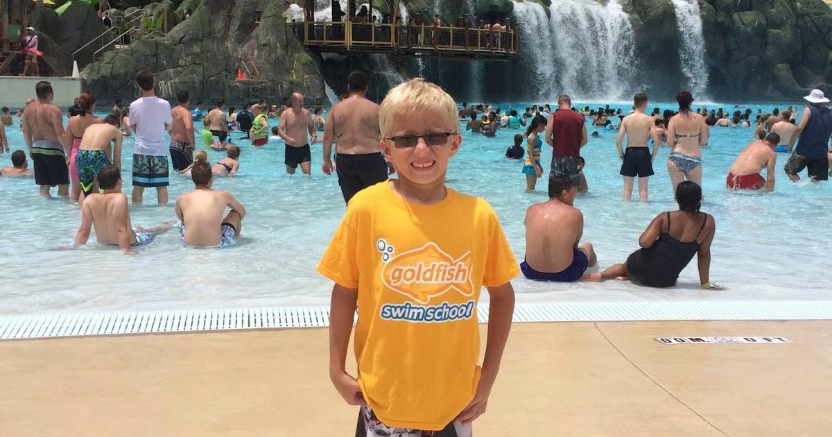 A Geek Daddy Goldfish Swim School Saves The Day