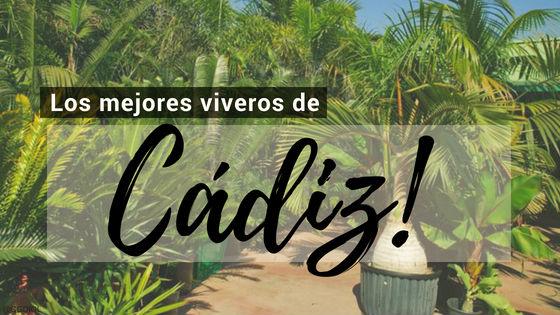 Listado de los Mejores Viveros de la Provincia de Cádiz, España, donde puedes comprar plantas para tus proyectos