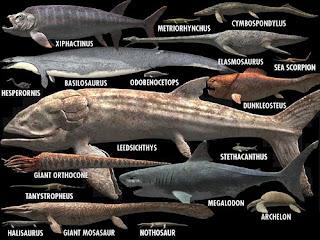 Comparación tamaño animales marinos prehistóricos más grandes