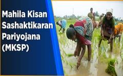 महिला किसान योजना: लोन आवेदन पत्र PDF फॉर्म डाउनलोड   Mahila Kisan Yojana MKY