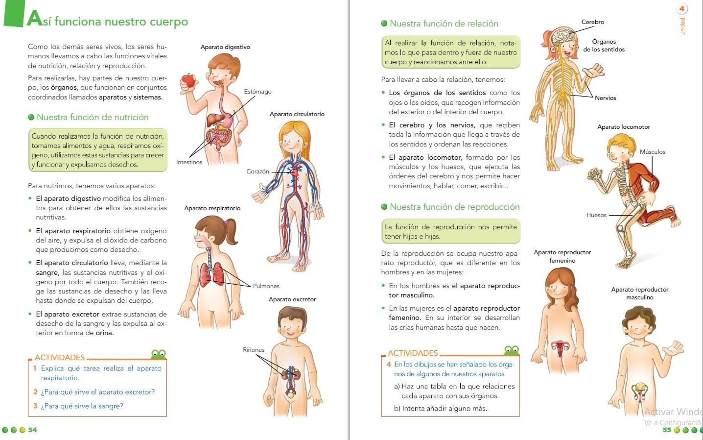 Ciencias Naturales. T4 El cuerpo Humano.