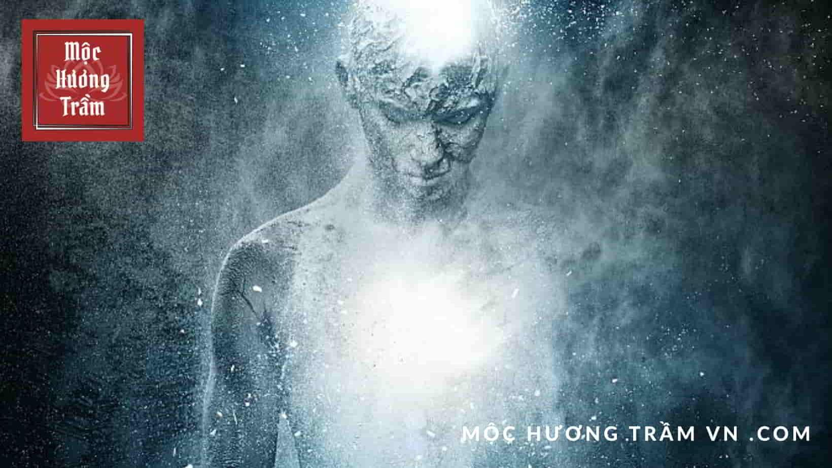 Linh hồn con người là một quá trình lượng tử