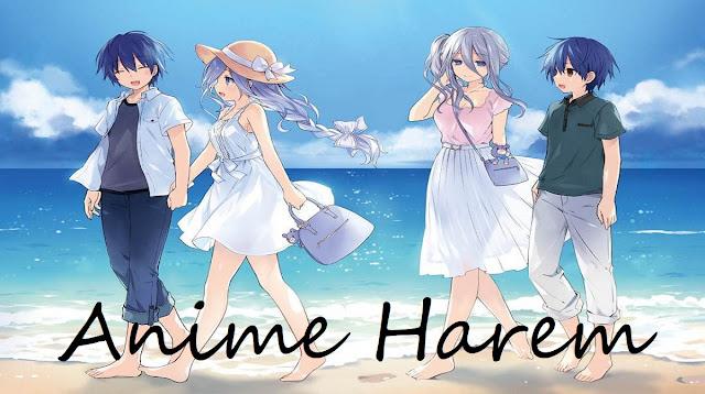 Anime Harem