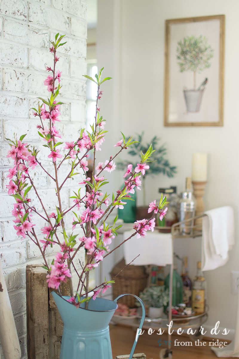 peach blossoms in a blue enamel pitcher