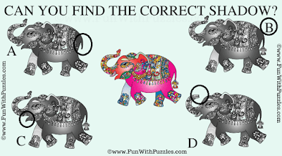 Shadow Picture Puzzle to Challenge Your Brain-Answer