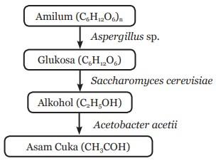 Perubahan Kimia yang Terjadi dalam Pembuatan Tape