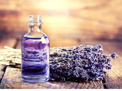 TInh dầu oải hương có tác dụng làm dịu da bị cháy nắng