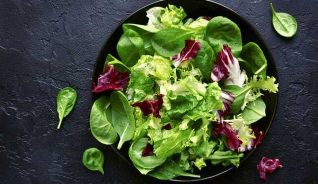 melhor dieta para emagrecer com saúde